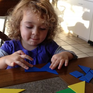 Tantalizing Tangram Fun!