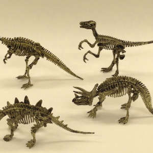 Dino Fossil Kit