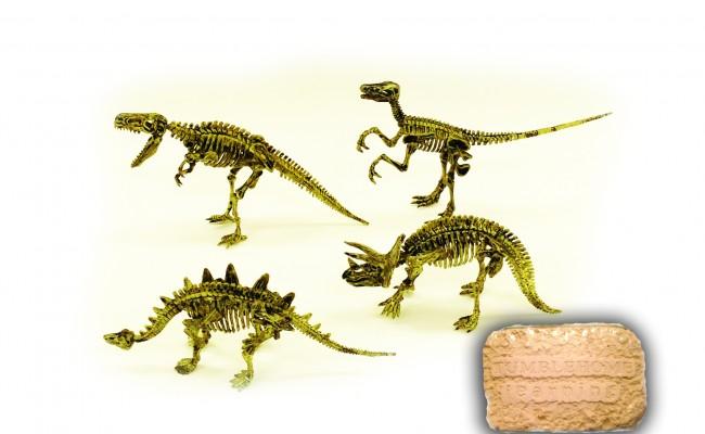THL 4 Pack Dino Dig Kit