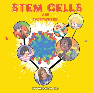 Stem Cells Are Everywhere