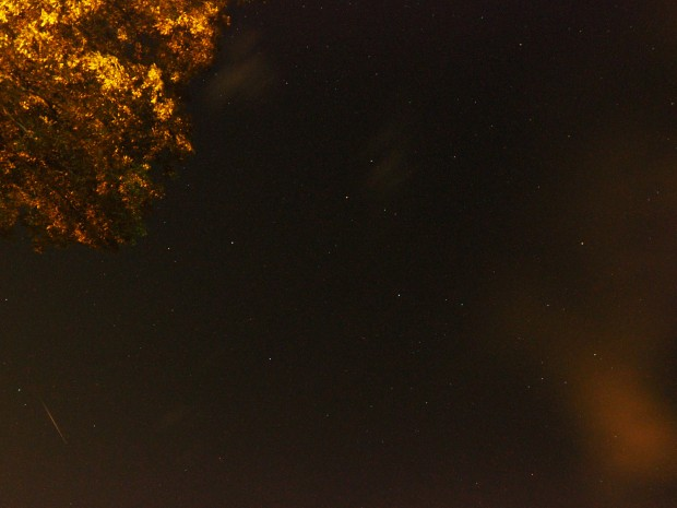 small Perseid meteor, lower left